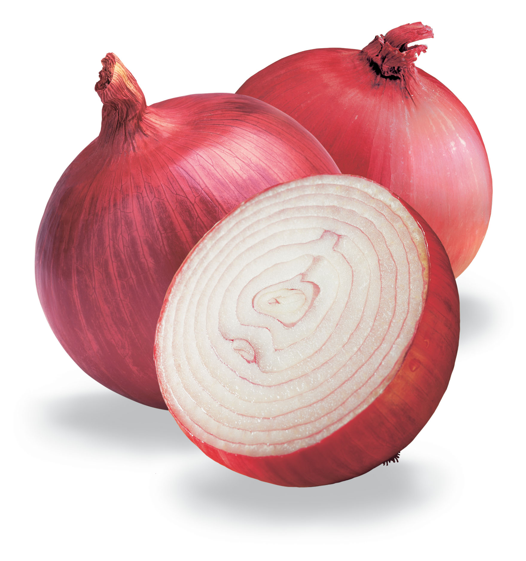Health Benefits of Red Onions – Rasta Natural Health ...