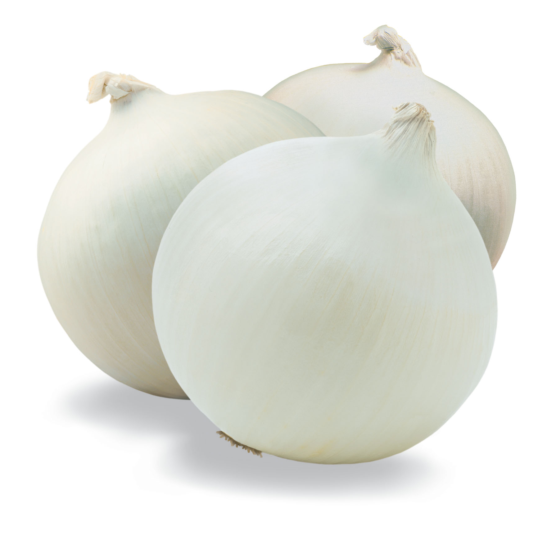 Onion Links | newhairstylesformen2014.com